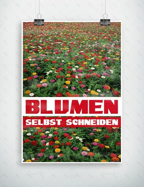 Blumen selbst schneiden - Werbeplakat by Despri, DIN A1, P0085