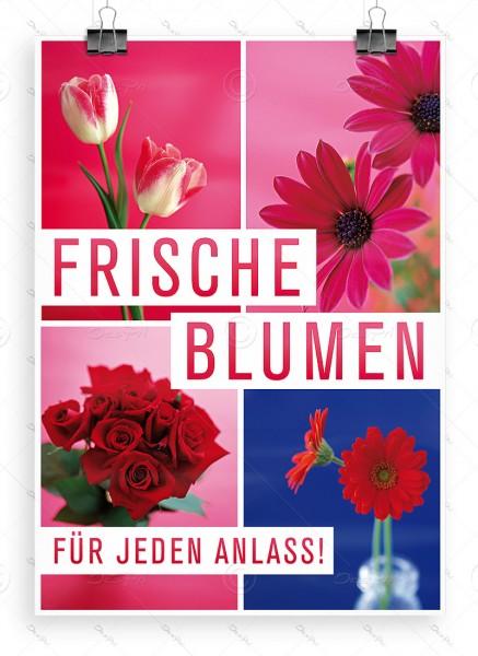 Frische Blumen für jeden Anlass! - Plakat - DIN A1, P0048
