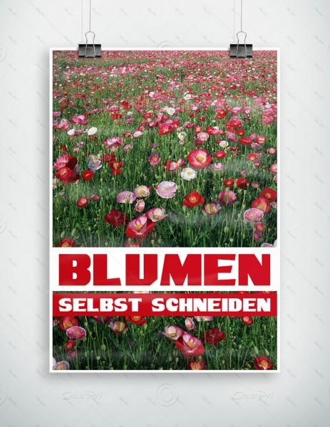 Blumen selbst schneiden - Werbeplakat by Despri, DIN A1, P0084